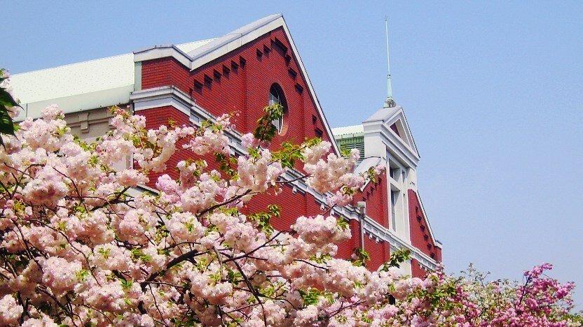 Cherry blossoms at the Osaka Mint Bureau. Source: Japan Guide https://www.japan-guide.com/e/e4008.html