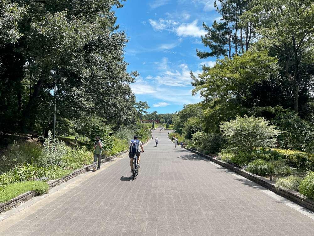 hattori ryokuchi park